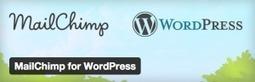 MailChimp for WordPress - Best MailChimp Plugin to Get More Email Subscribers Free Download | Wordpress | Scoop.it