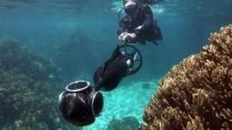 Plongez sur la Grande barrière de corail grâce à Google Street View | Gizmodo | Esprit libre | Scoop.it