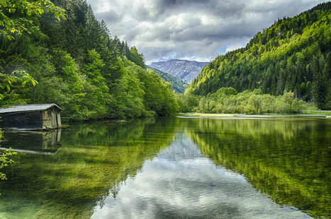 Photos of the Day: The Green Lake | DashBurst | Digital-News on Scoop.it today | Scoop.it
