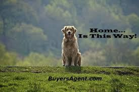 Designated Agency IS Dual Agency   What is an Exclusive Buyer's Agent?   Scoop.it