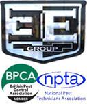 Pest Control in London | Pest Control Companies London | Scoop.it