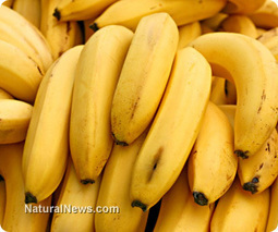 Research shows bananas effective way to naturally improve eye health | AB.Eco | Scoop.it