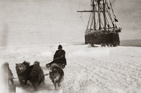 Amundsen, Race to the South Pole - Pictures, More From National Geographic Magazine | Antarctica | Scoop.it