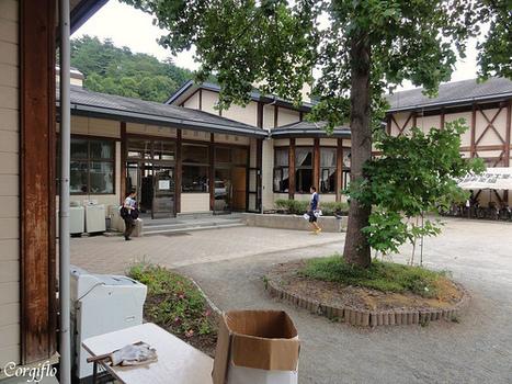 [blog] RQ volunteer center, TOME | Journal de Flo et ses Corgis au Japon | Japon : séisme, tsunami & conséquences | Scoop.it