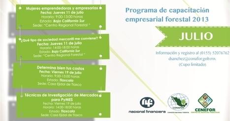 Programa de Capacitación Empresarial Forestal 2013 | Forestal | Scoop.it