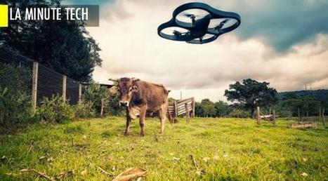 Agriculture: les nombreuses vertus des objets connectés | Digital for real life | Scoop.it