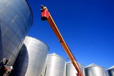 JAPANESE trading house Marubeni has decided to close its Australian grain business | Grain du Coteau : News ( corn maize ethanol DDG soybean soymeal wheat livestock beef pigs canadian dollar) | Scoop.it