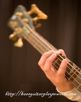 Bass Guitar Techniques Lessons   writing, photography and bass playing   Scoop.it
