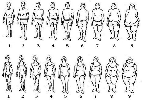 """Experiment: Differences in Body Image Between Men and Women 