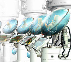 Artificial wombs: is a sexless reproduction society in our future? | ScienceCaz | Scoop.it