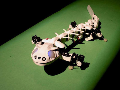 11 robots conçus grâce au biomimétisme, cette technique qui s'inspire de l'ingéniosité de la nature | Robotique et pme | Scoop.it