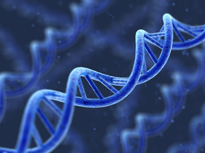 New method to diagnose hereditary breast and ovarian cancer | Breast Cancer News | Scoop.it