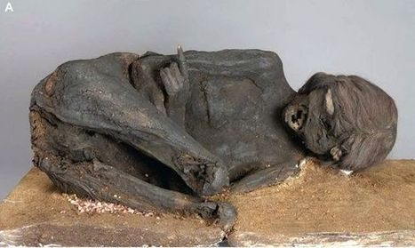 Mummy murder mystery solved: Incan woman's head smashed - Fox News | Ancient Mysteries | Scoop.it
