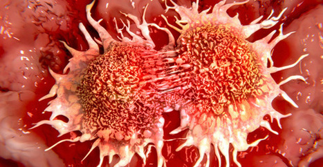 Causes of Cancer Likely Found in 'Junk' DNA, Study Says | The Basic Life | Scoop.it