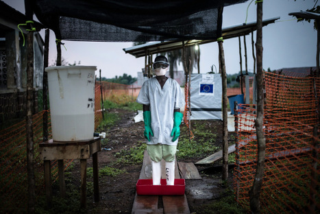 HOW THE WORLD LOOKED AWAY WHILE WEST AFRICA BLED: 365 days of Ebola | Virology News | Scoop.it