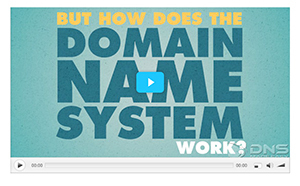 What Is A DNS And Why It Is Useful? | DNS | Scoop.it