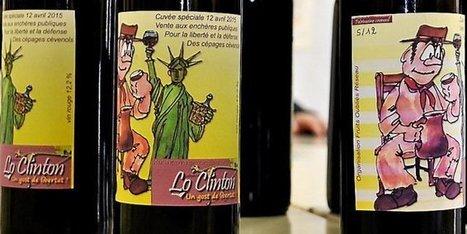 Cévennes : on défend un cépage prohibé .... | Le Vin et + encore | Scoop.it