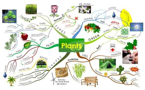 Plants free mind map download | Cartes mentales | Scoop.it