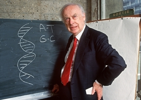 James Watson is auctioning off his Nobel Prize. Please do not bid on it | Ethics | Scoop.it