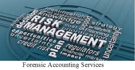Forensic Accounting Services in India, Forensic Investigations in Delhi, Fraud Investigation Services | Forensic Accounting Services | Scoop.it