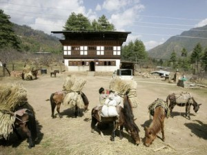 Bhutan Aims to Be The First Fully Organic Nation - Organic Connections   Searching for Safe Foods   Scoop.it