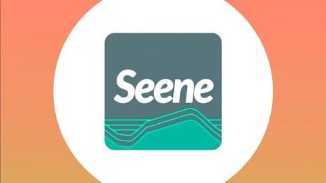 [Bon App'] Seene, une application pour faire des photos 3D ... | 3D | Scoop.it