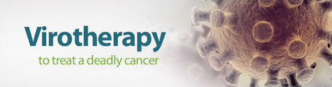 Virotherapy to treat a deadly cancer | Health News | Scoop.it