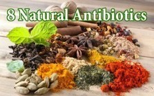 "Natural Immunity: 8+ Natural Antibiotics to Replace the Drugs (""natural is better; time to switch"") 