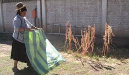 Assurer le financement des exploitations familiales dans les Andes   Questions de développement ...   Scoop.it