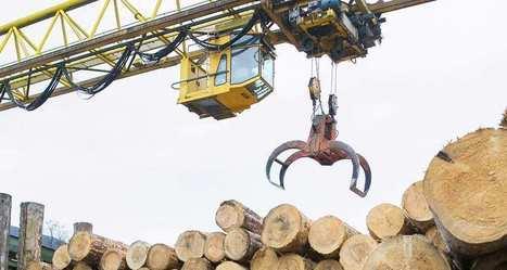 La forêt, un secteur économique dont la valorisation passera par l'innovation | abibois | Scoop.it