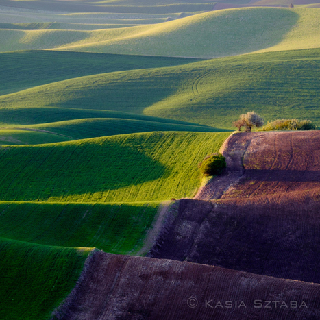 The Palouse – A Visual Journey with the Fuji X-Series – Part 1 | Fujifilm X | Scoop.it