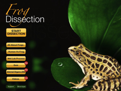 Virtual Frog Dissection on Your iPad | Educated | Scoop.it