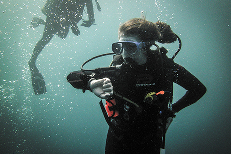 UM SCUBA club ventures out on world-class dives   The Miami Hurricane   ScubaObsessed   Scoop.it