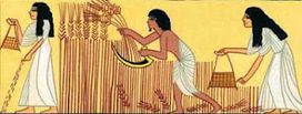 Ancient Egyptian Daily Life   EGY-KING   Discovering Ancient Egypt   Scoop.it