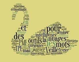 Des créateurs de nuages de mots à la portée de tous | Formation et culture numérique - Thot Cursus | Veille en info-documentation | Scoop.it