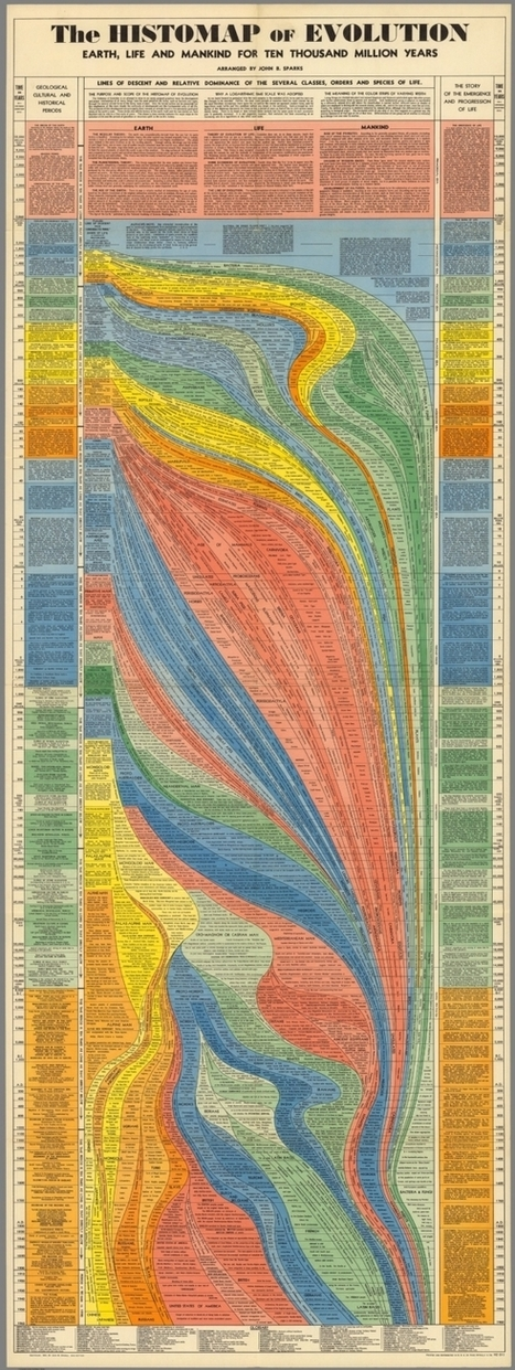 10 Million Years of Evolution Visualized in an Elegant, 5-Foot Long Infographic from 1931 | Pedalogica: educación y TIC | Scoop.it