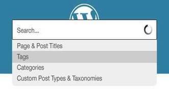 5 Free Yet Best WordPress Site Search Plugins | Open Source Software Development Services | Scoop.it