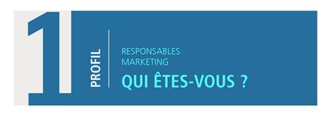 Infographie : Heureux comme un marketeur en 2016 | Les infographies ! | Scoop.it