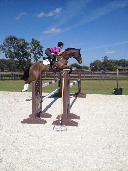 Max Corcoran — Practice Makes Perfect at the Ocala Training Sessions   HorsesOne   Scoop.it