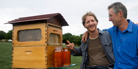 Revolutionary Honey Harvesting Beehive Crowdsources $2 Million in First Day » EcoWatch | sustainablity | Scoop.it