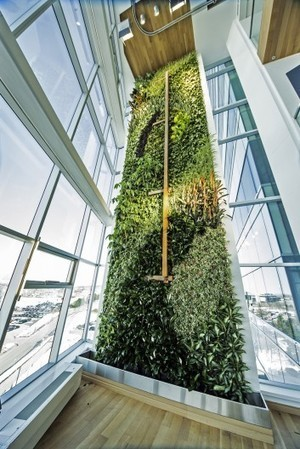 """""""World's tallest"""" interior living wall unveiled in Quebec 