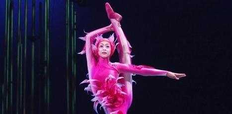 Cirque du Soleil a caminho de ser vendido ao consórcio TPG - Jornal de Negócios - Portugal | Investimentos em Cultura | Scoop.it