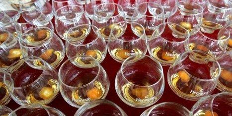 Baisse du cognac sur le marché chinois : Moët-Hennessy trinque aussi | Le vin quotidien | Scoop.it