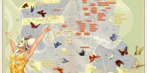 You Are Here: Mapping an Infinite City | Nowhere | The Creative Body | Scoop.it