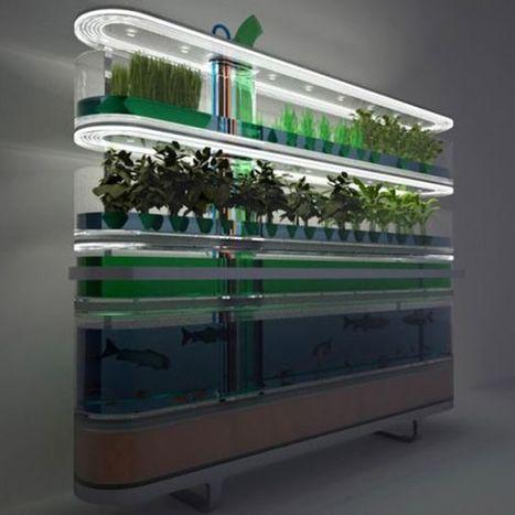 Indoor garden design ideas for green interiors | Vertical Farm - Food Factory | Scoop.it