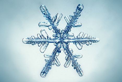 Winter's most beautiful secret: The astonishing, complex science of snowflakes | enjoy yourself | Scoop.it