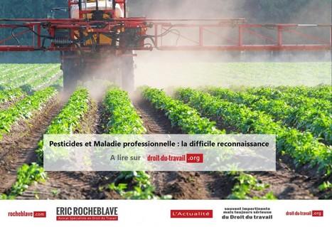 Pesticides et Maladie professionnelle : la difficile reconnaissance   ECOLOGIE_DEVELOPPEMENT DURABLE   Scoop.it