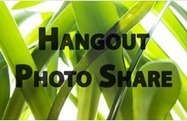HangoutApps.com - Google+ Hangout Apps Directory | Docentes y TIC (Teachers and ICT) | Scoop.it