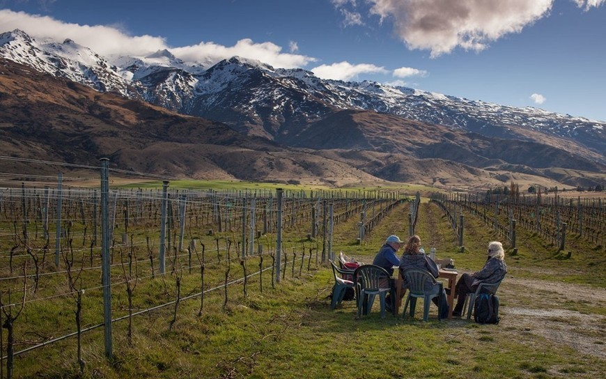 Artisan Winegrowers of Central Otago - The Inde...