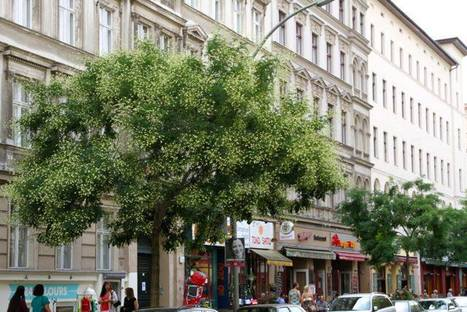 Investment Strategy on Berlin Property by Gate Berlin | Appartamenti Vendita Berlino | Scoop.it